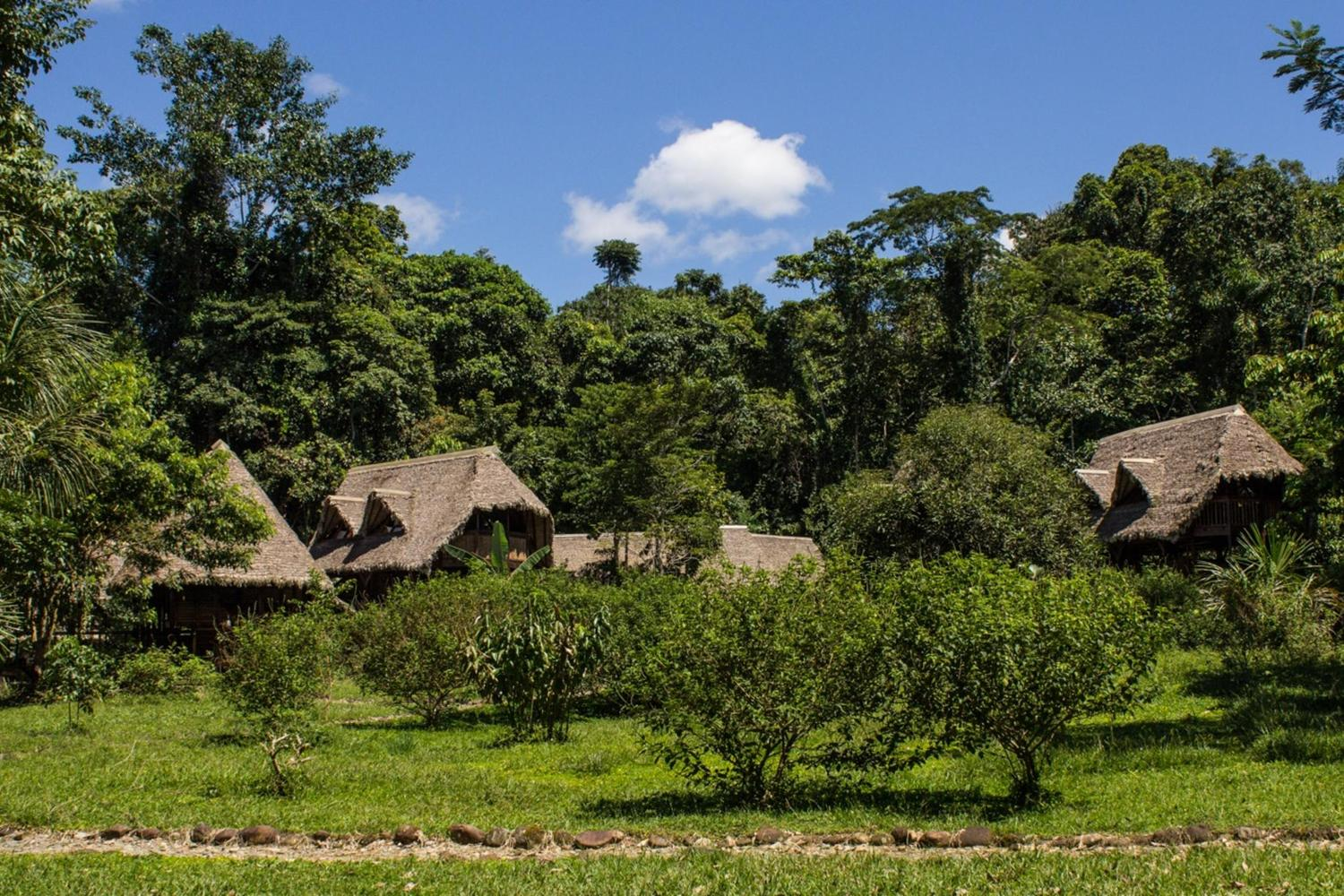 The Manu Learning Center lodge is set in the heart of the Manu biosphere reserve