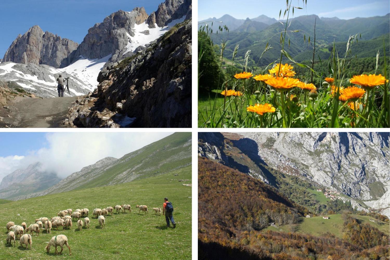 The changing seasons of the Picos de Europa