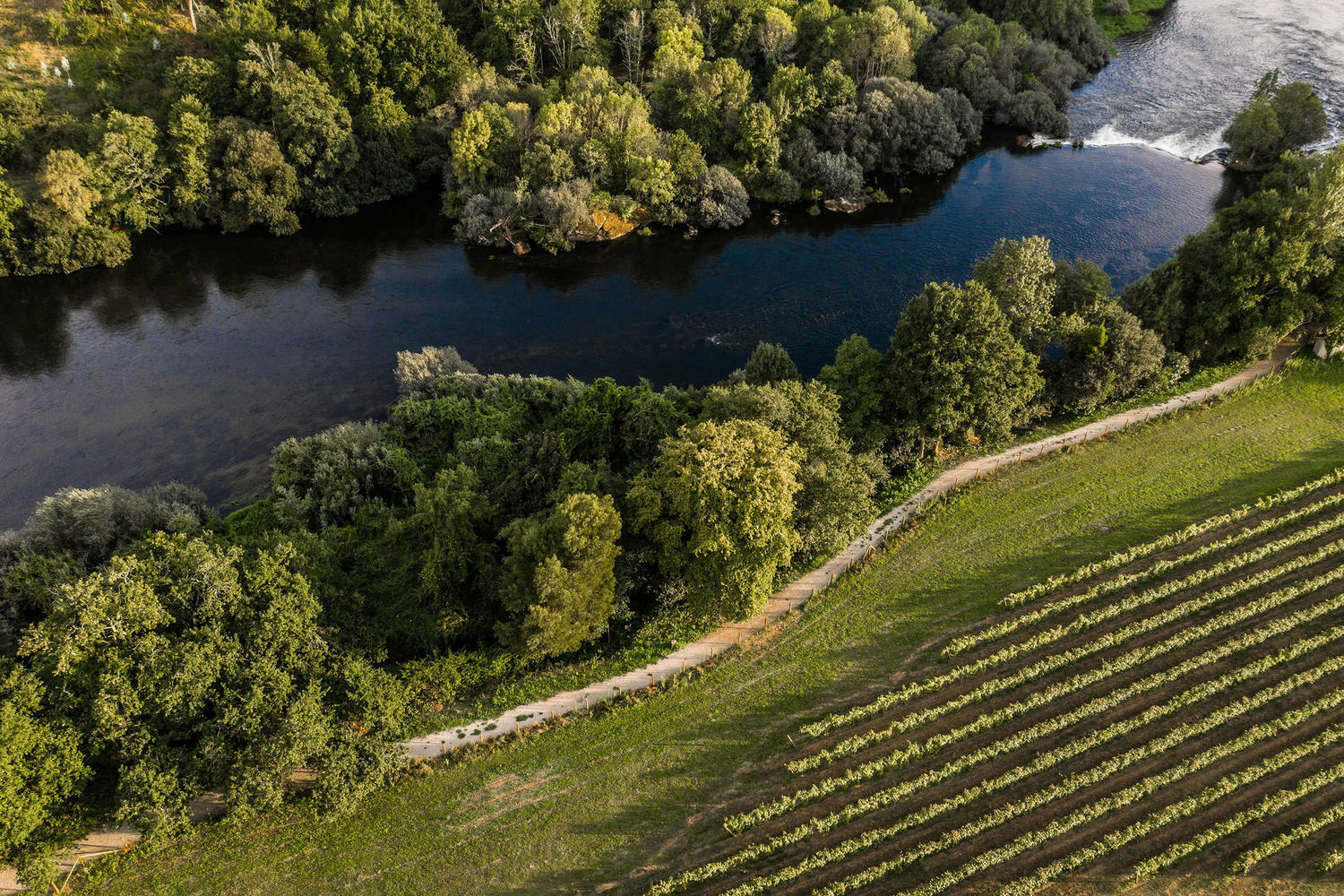 Areal view of Quinta do Ameal vineyards by the Lima river.