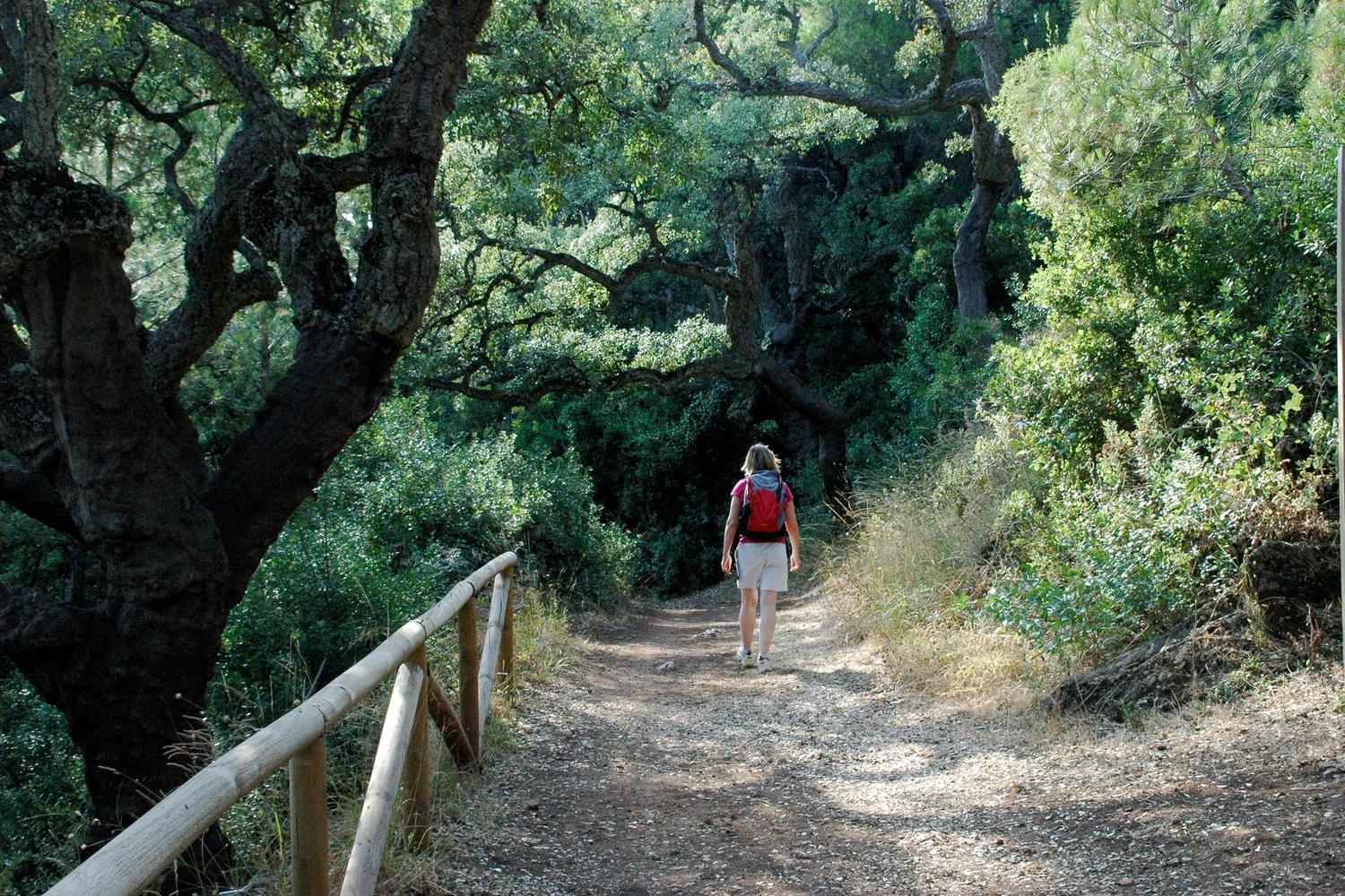 Walking along the shaded  paths of Alajar in the Aracena hills