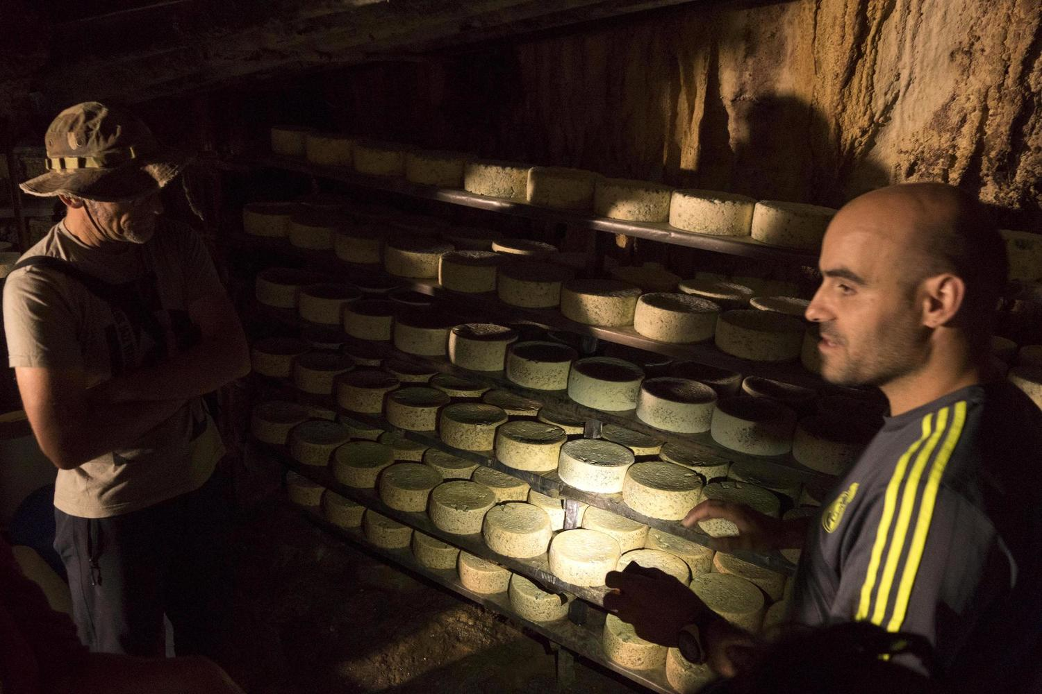 Javier shows the secrets of his Cabrales blue cheese cave maduration