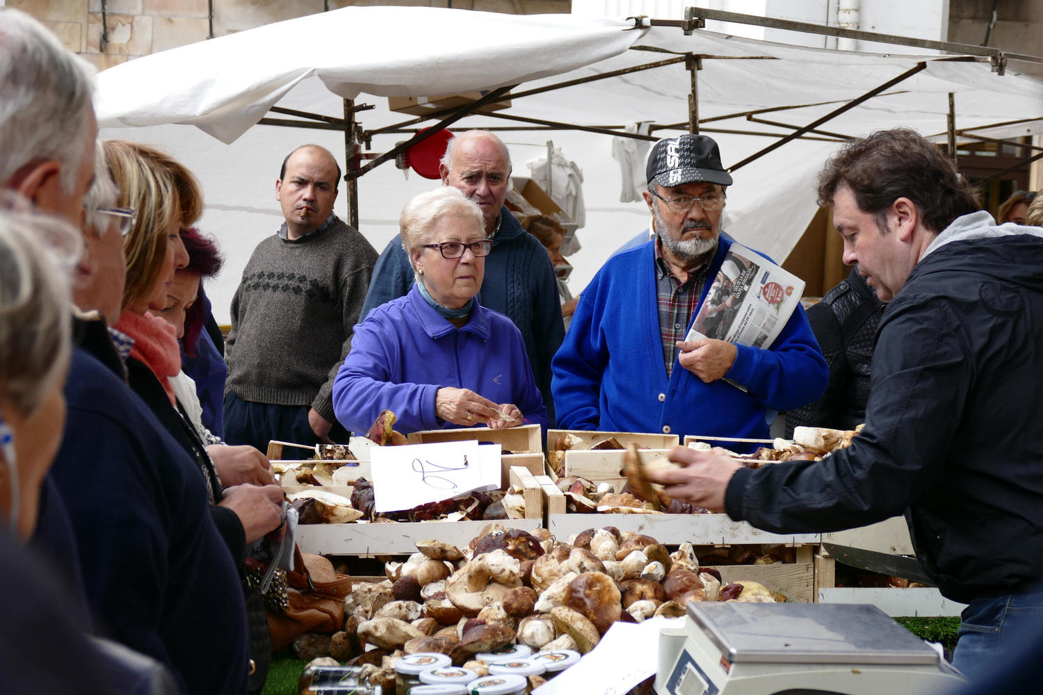 Examining the autumnal crop of mushrooms in a Basque market