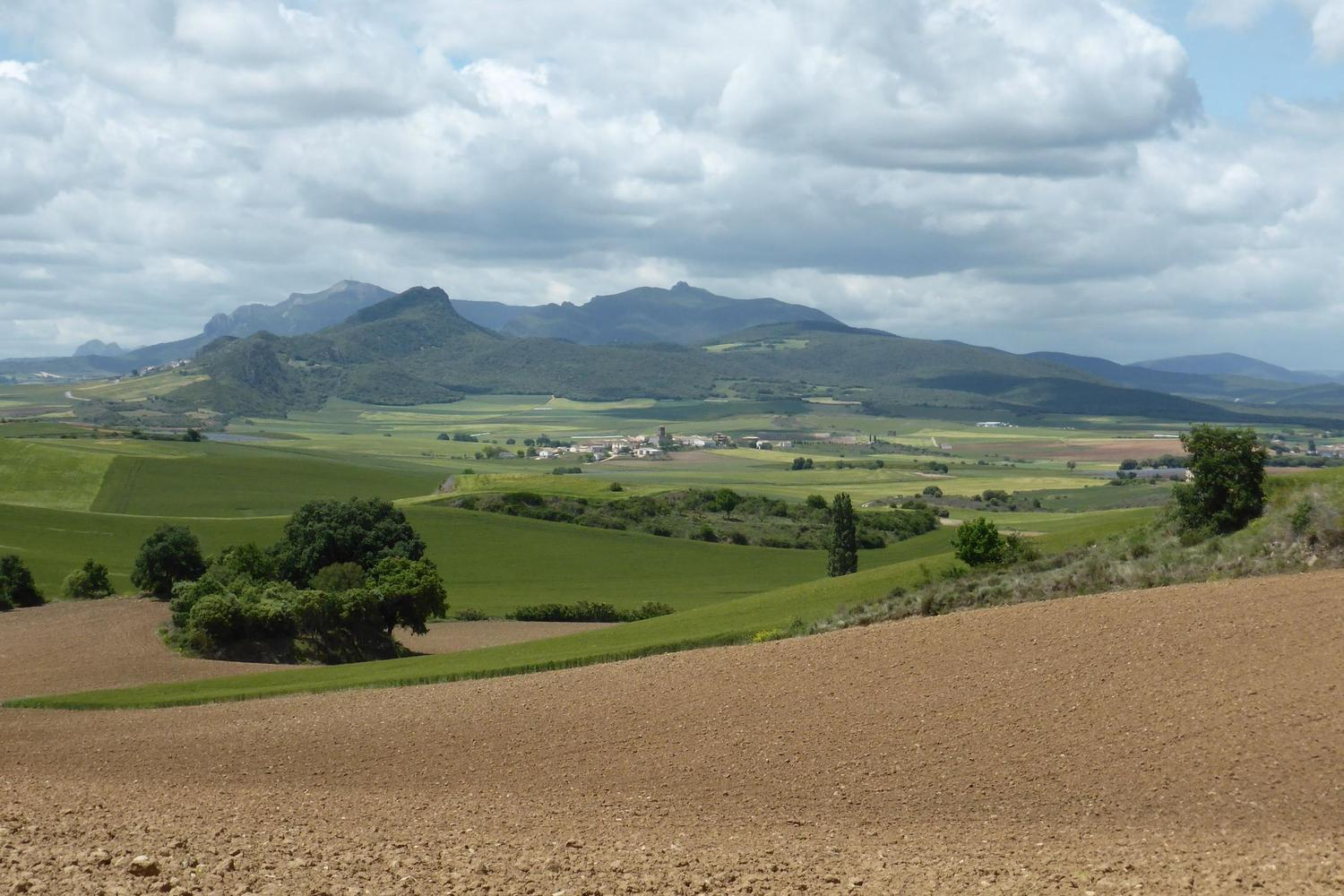 Rolling fields on the way from Estella to Mues in Navarre