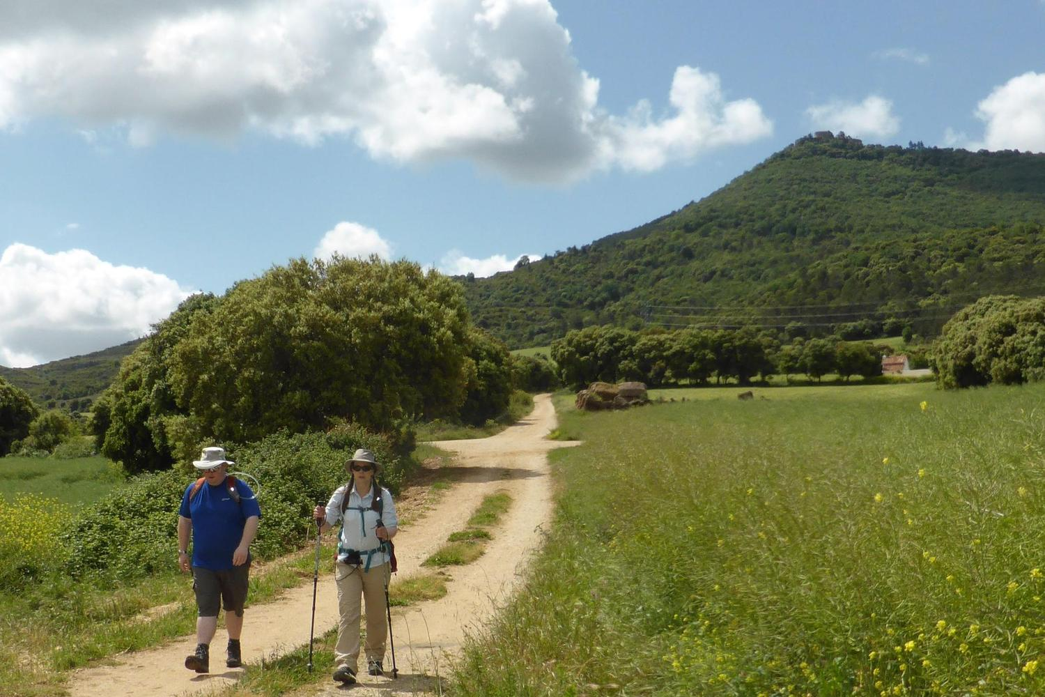 Walking through the heart of the Navarran countryside