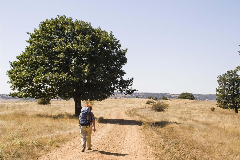 Camino de Santiago pilgrim walking