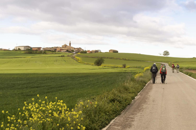 Pilgrims on the road to Santiago de Compostela