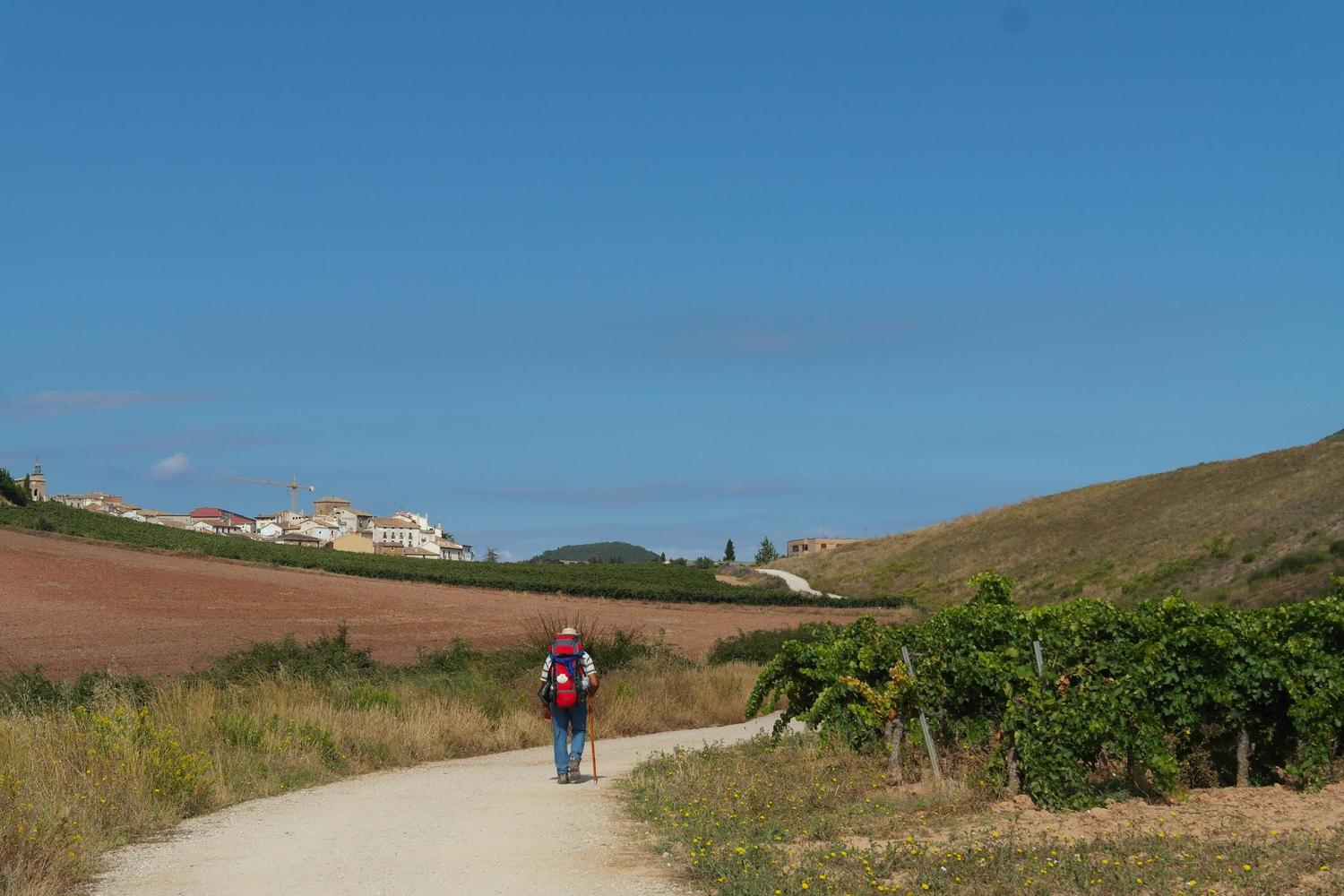 The joys of walking solo on the Camino de Santiago