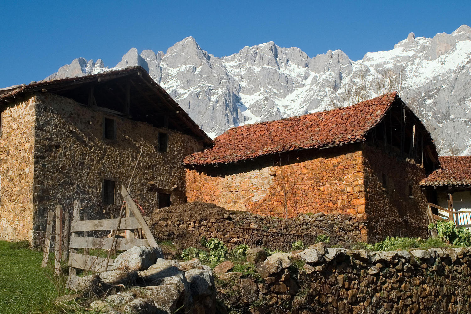 Mogrovejo village with the Picos in the background