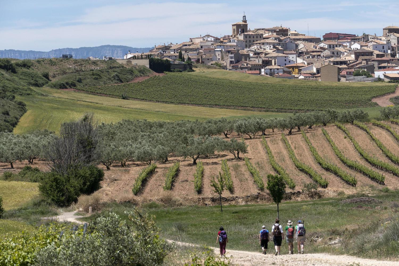Walking towards Cirauqui in the low lands of Navarre