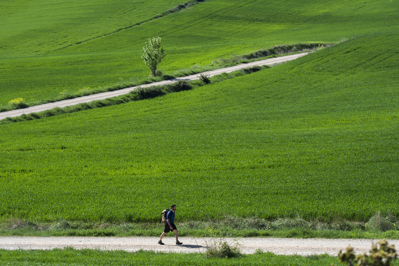 Walking on green