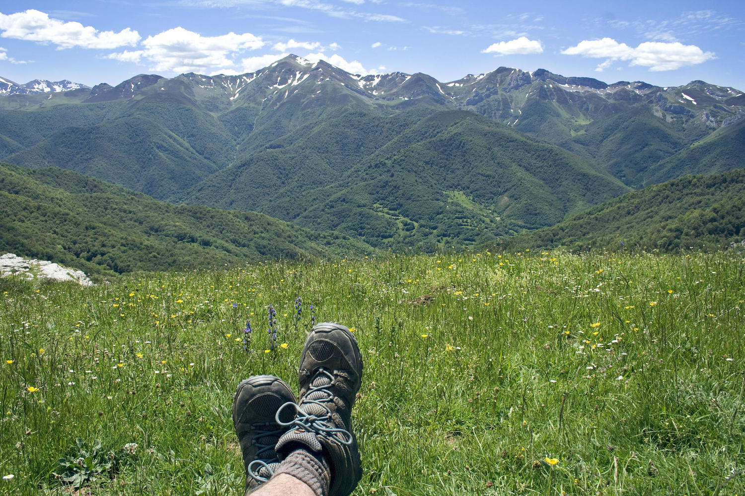 Relaxing on a meadow in Liebana valley
