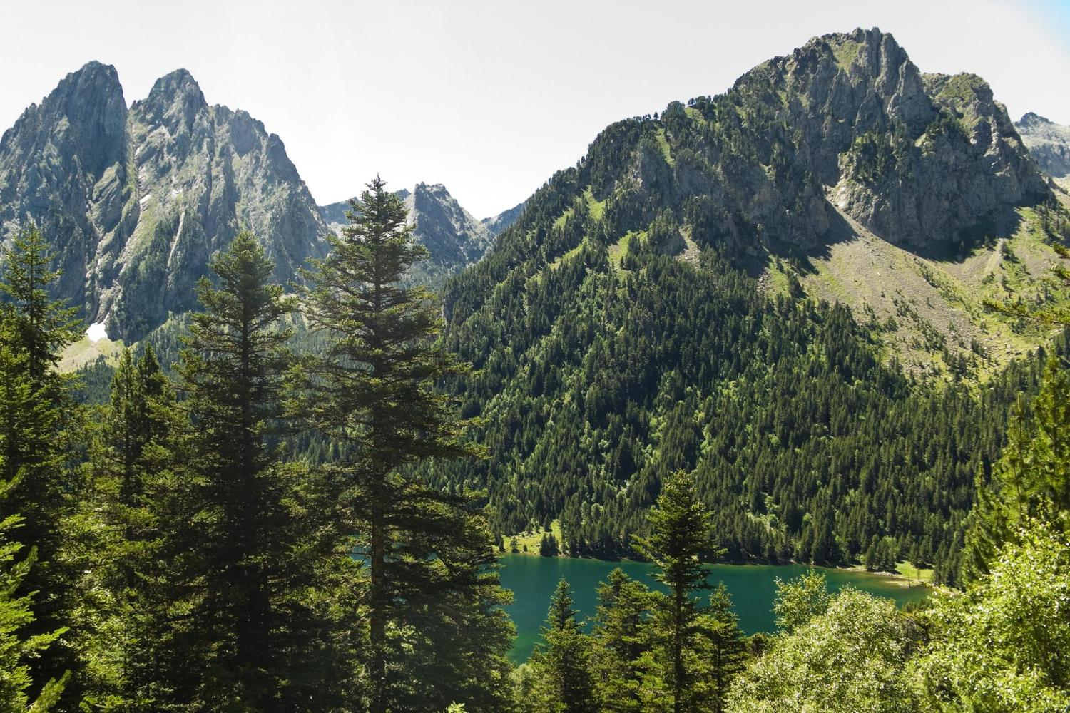 The high forests, peaks and lakes of the Aigues Tortes National Park
