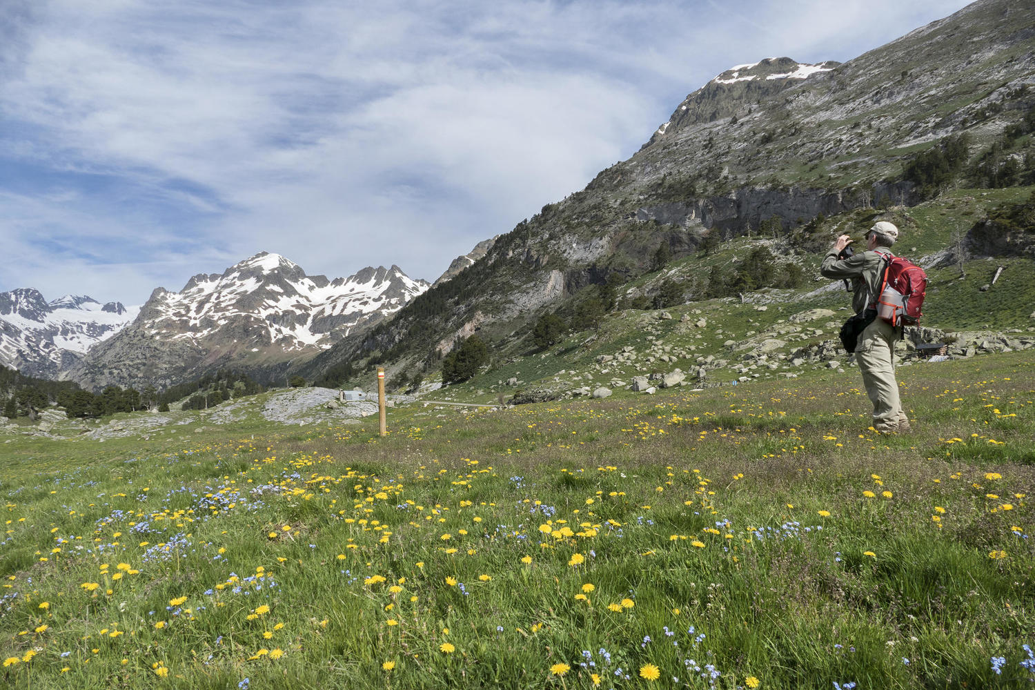 Spring pastures in the high Benasque valley.