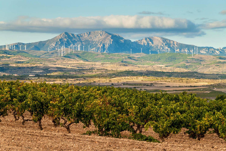 Countryside near Logrono