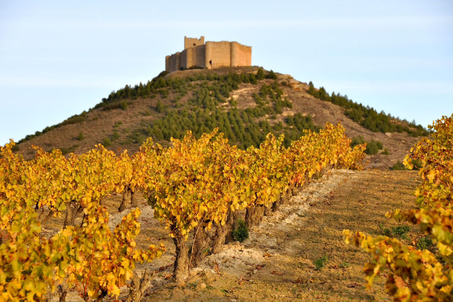 Davalillo castle surrounded by autumn colored vineyards.
