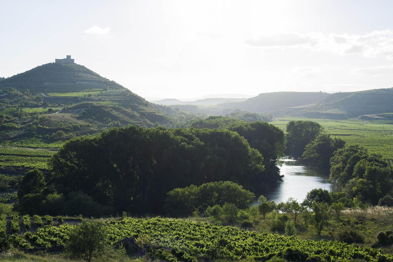 Davalillo castle above the Ebro river.
