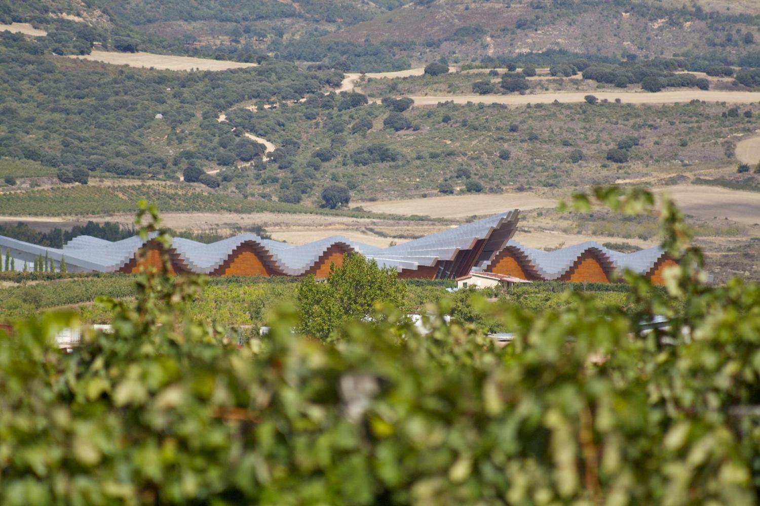 The Ysios winery, designed by Calatrava