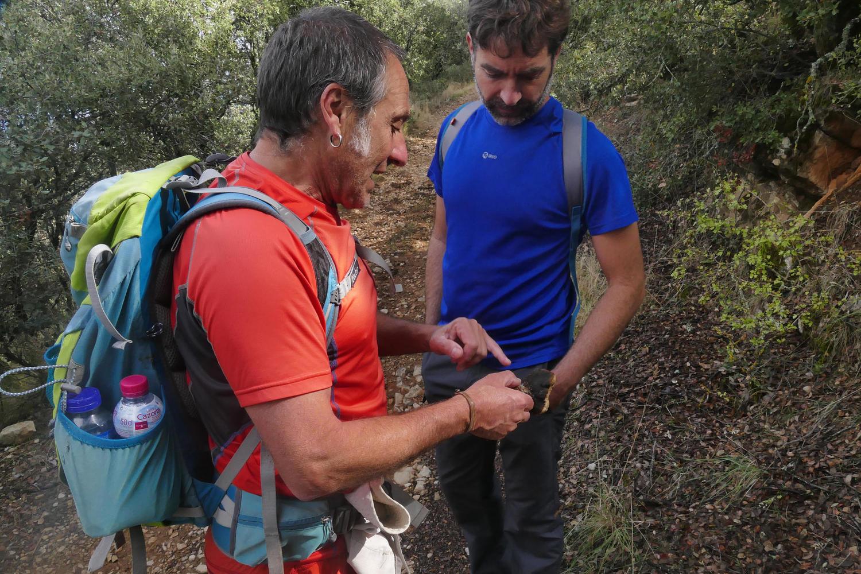 Xabi explains how to identify edible wild mushrooms to Raul