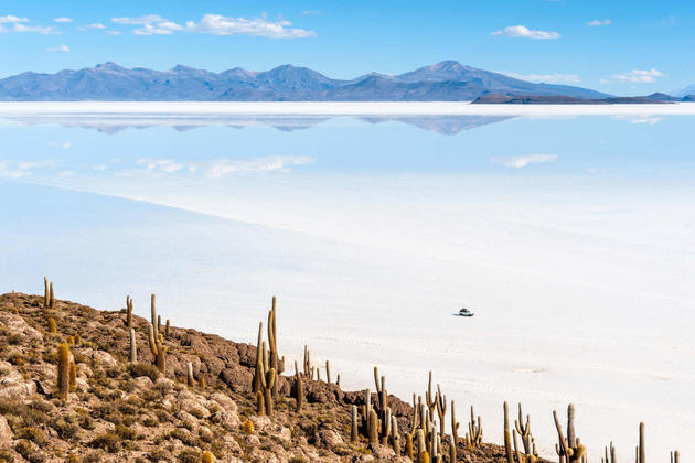 Bolivia uyuni isla de pescadores salt lake uyuni in bolivia