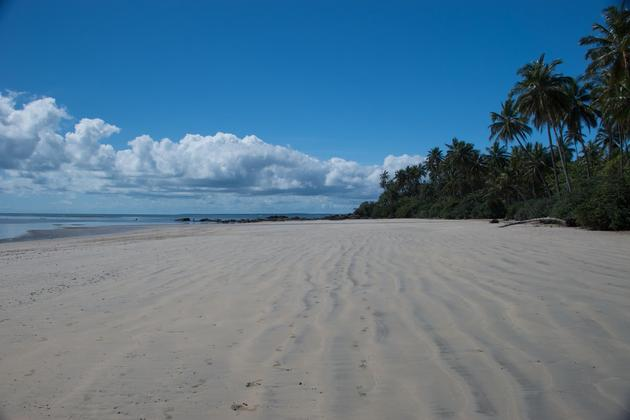 Brazil bahia boipeba island wide beach
