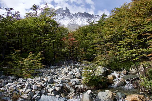 Chile patagonia aysen cerro castillo mountain study 20