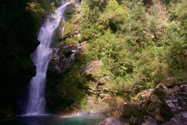 Chile patagonia carretera austral pumalin park cascada trail