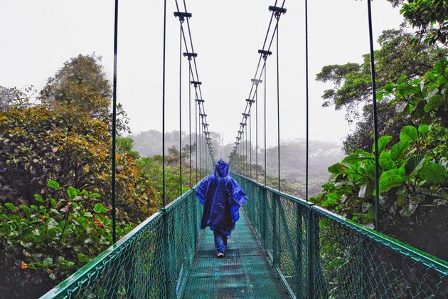 Costa rica monteverde cloud forest canopy20180829 76980 e73o2