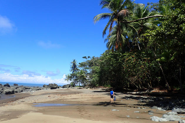 Costa rica osa peninsula walking along coast to drake bay c matt power