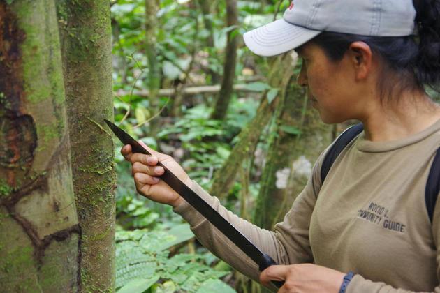 Ecuador amazon rocio guiding walk chris bladon