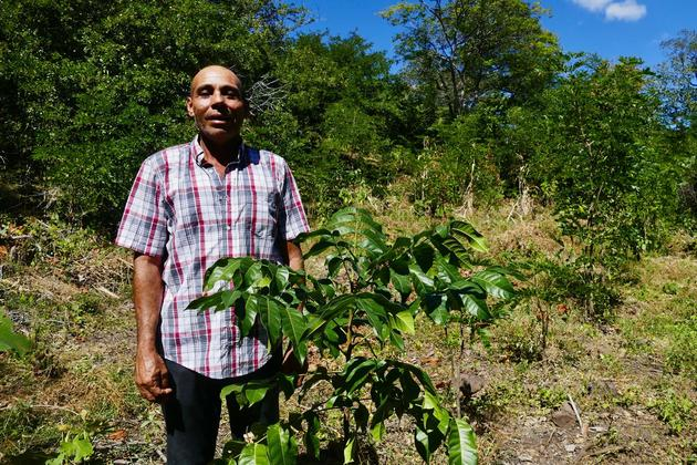 Nicaragua taking root project worker