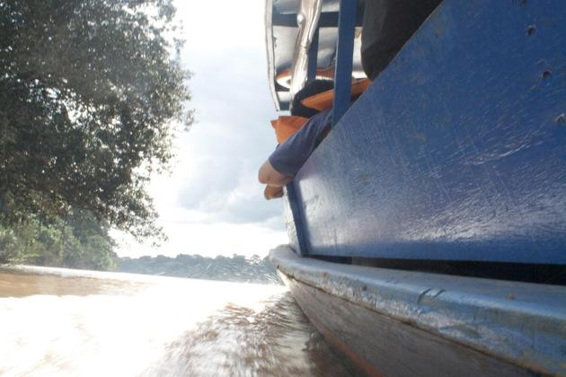 Peru amazon boat ride towards refugio amazonas