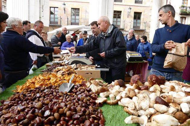 Spain basque country ordizia market mushrooms chestnuts