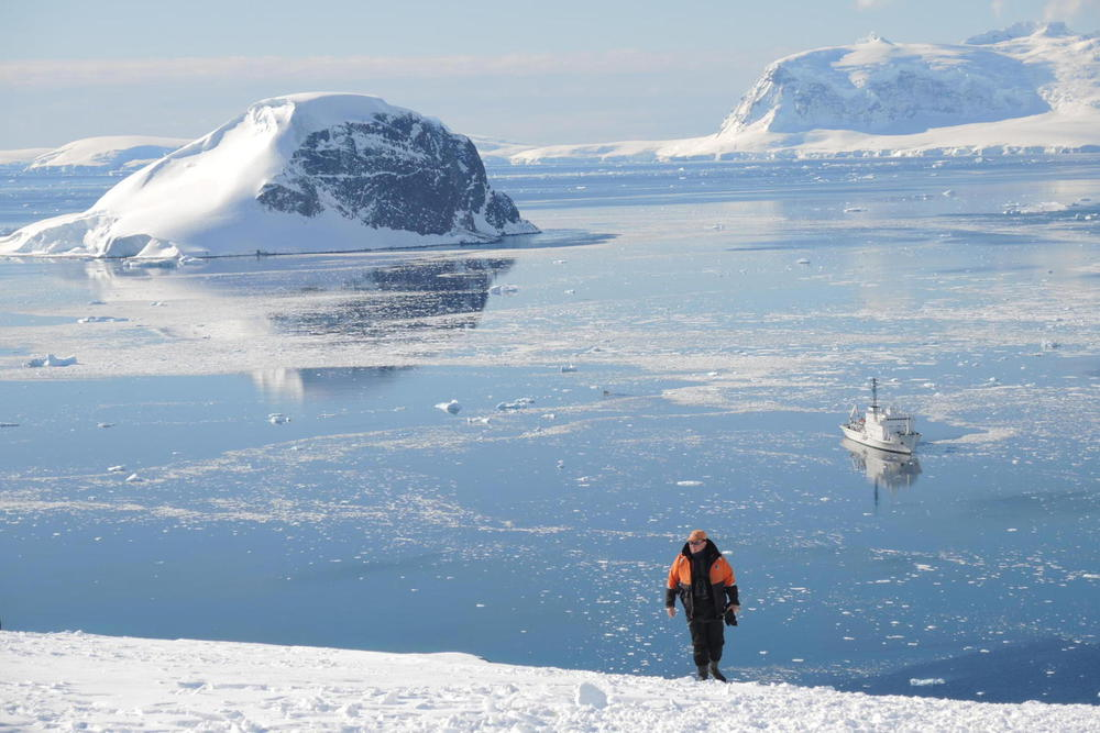 Antarctica danco island walker bay ioffe background20180829 76980 3uxfn5