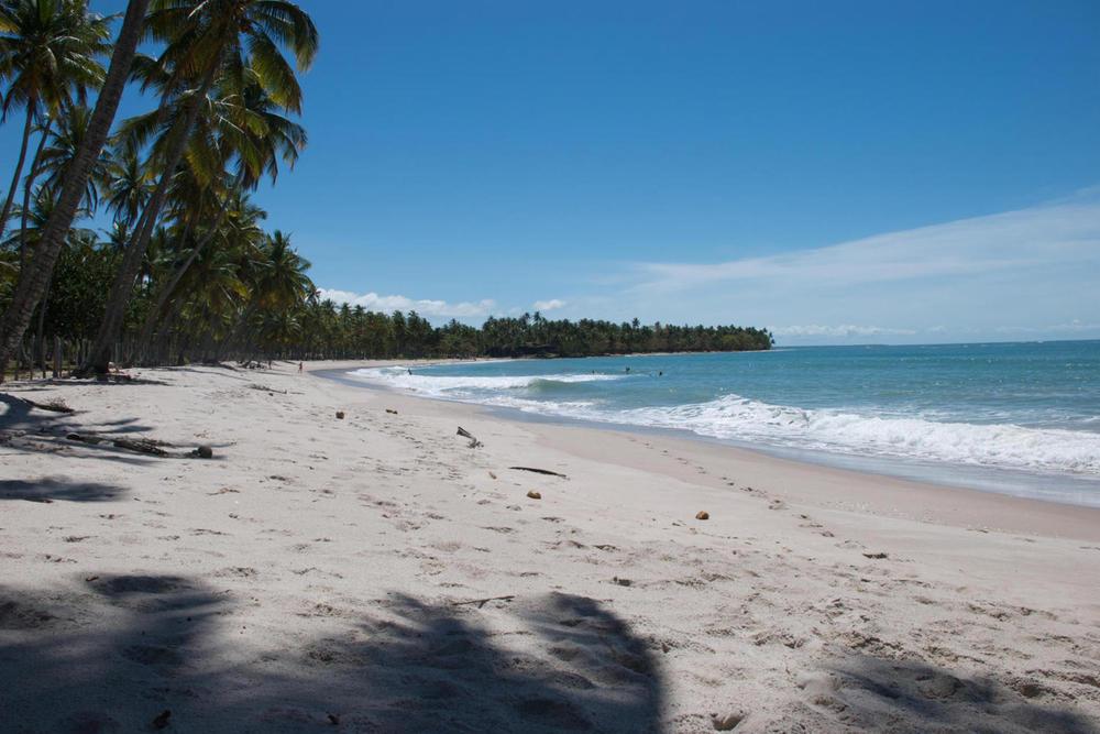 Brazil bahia boipeba palm fringed wide beach right hand curve20180829 76980 x7a3nk