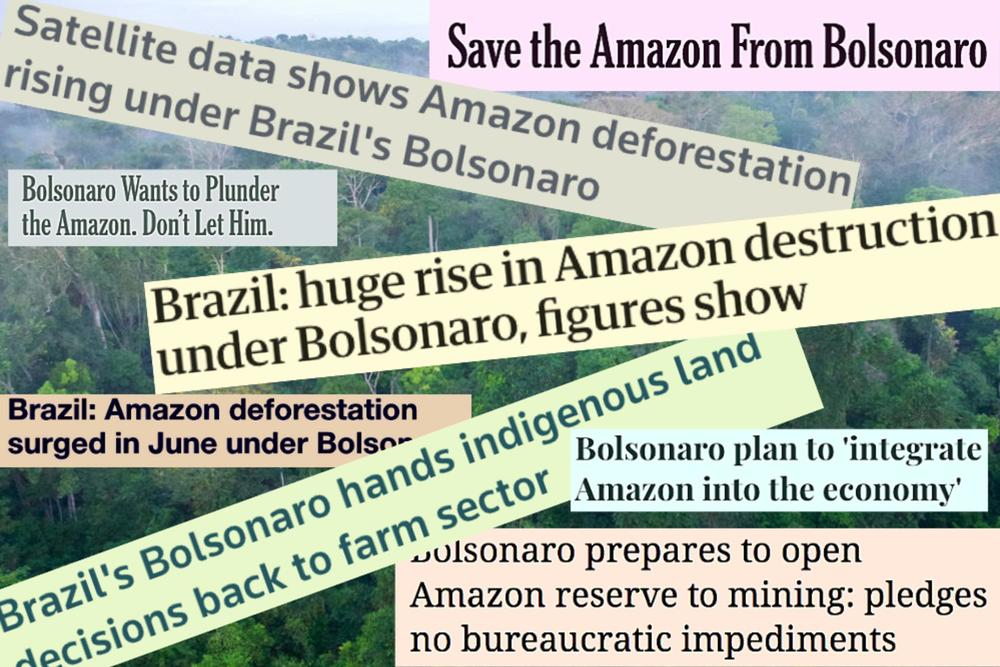 Brazil amazon bolsonaro