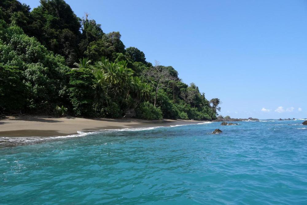 Costa rica copyright alison thomas beautiful osa peninsula beach blue waters20180829 76980 1ly1kuk