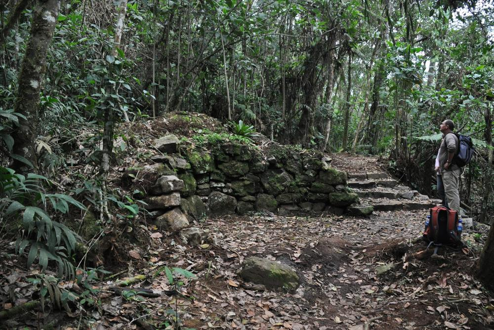 Peru northern peru kuelap ruins in jungle