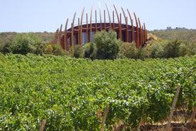 Chile winelands lapastolle winery 020180829 76980 o6eqmk