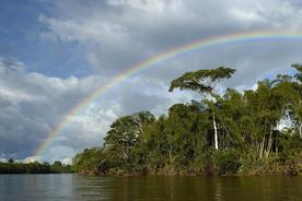 Ecuador amazon huaorani ecolodge senderos rainbow over jungle river
