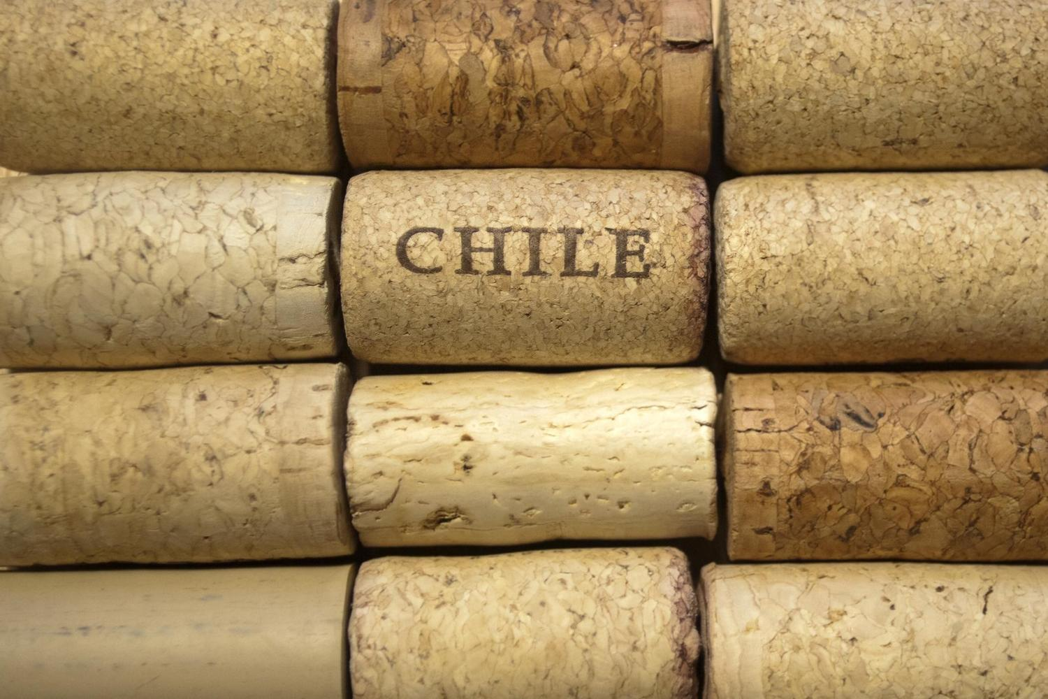 chilean wine We count down chile's highest-scoring fine wines as part of a look at the country's growing reputation for world-class reds chile's position as a truly renowned and serious fine wine producer is still a work in progress the country rocketed into the collective conscious of trade and consumer.