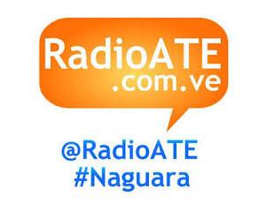 Radio ATE