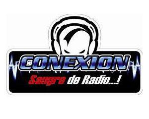Conexion 101.3 FM