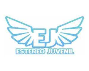 Estereo Juvenil 91.3 FM