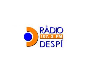 Radio Despi 107.2 FM