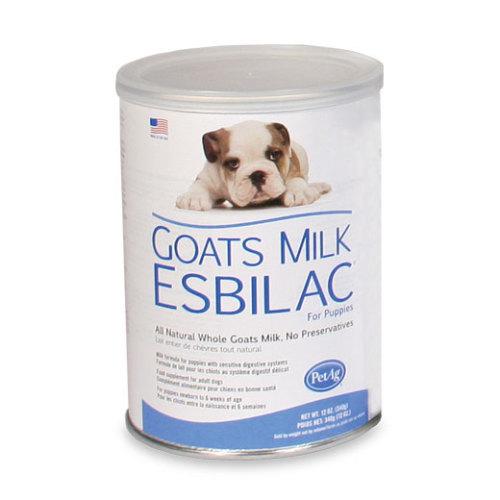 Goats Milk Esbilac Puppies