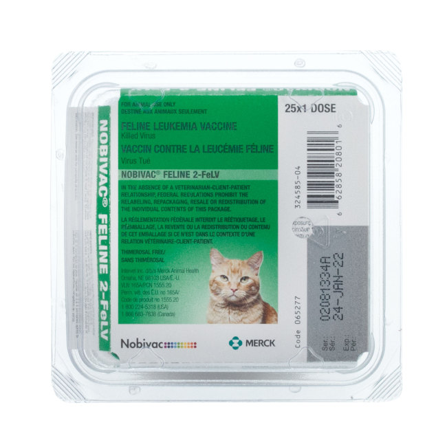 FeLV - Feline Leukemia Vaccine | Kitten and Cat FeLV Vaccines