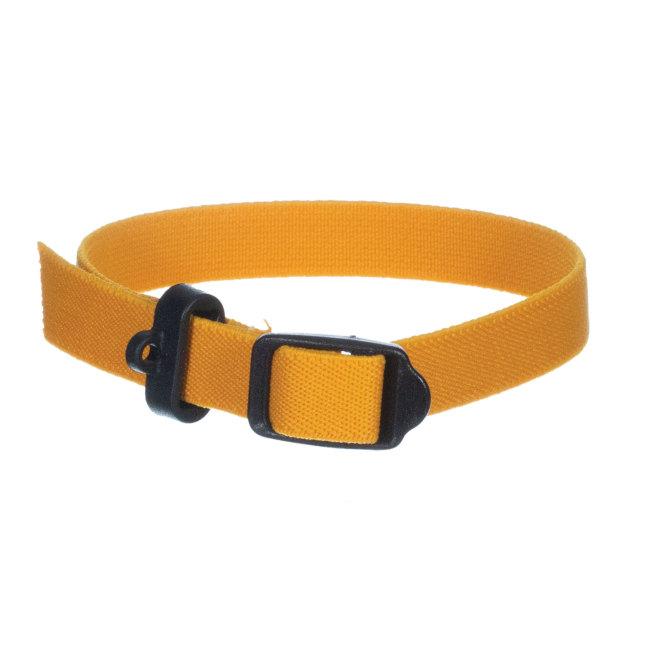 Breeder's Edge® ID Me Perfect Fit Collar