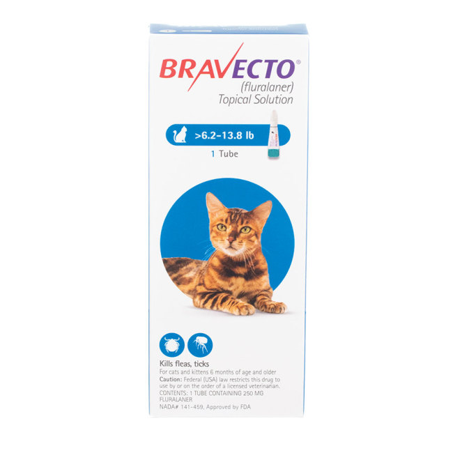 Bravecto Topical for Cats