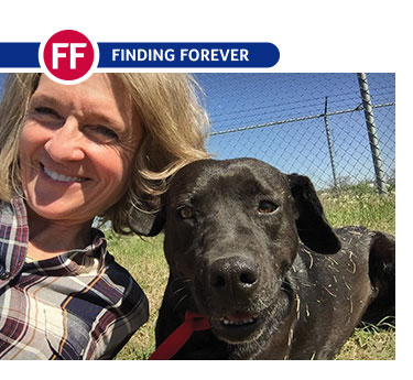 Rescue Helps Dogs, Inmates Heal Together - Finding Forever