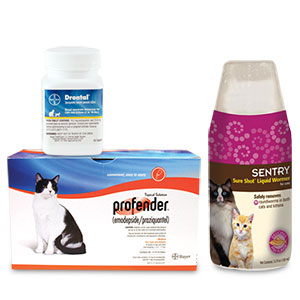 Cat and Kitten Wormers | Save on Dewormers for Kittens and Cats with Revival Animal